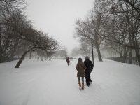 Entering McCarren Park